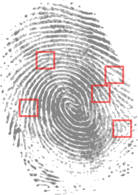 introduction to fingerprints
