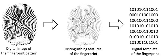 How Fingerprint Scanner Works