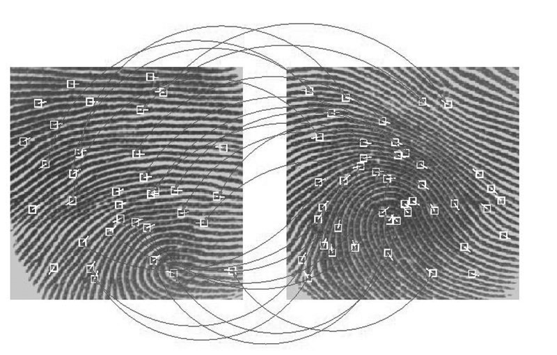 Fingerprint Template Matching