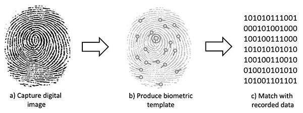 How Fingerprint Readers Work