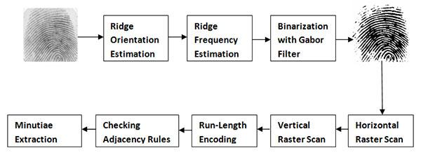 Figure: Block diagram of minutiae extraction algorithm using run-length encoding