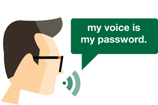Voice Verification Online Banking