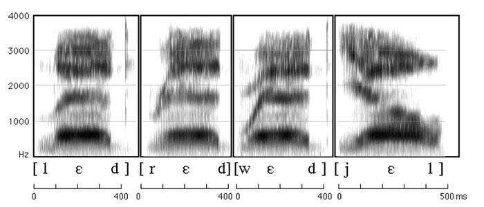 Sample Voiceprint
