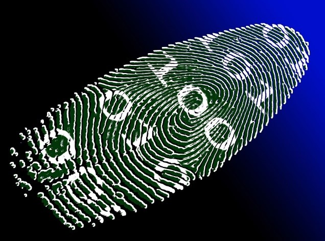 Biometric Identity Management
