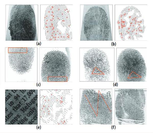 Automated Fingerprint Processing