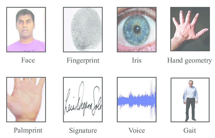 Biometric Modalities