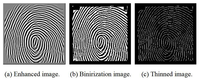 Fingerprint Image Enhancement