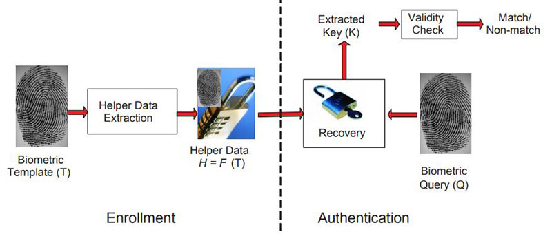 Biometric Security Using a Key Generation Biometric Cryptosystem