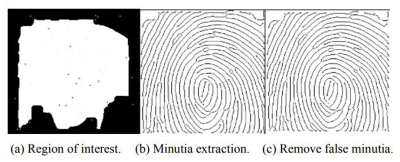 Minutia Extraction Process