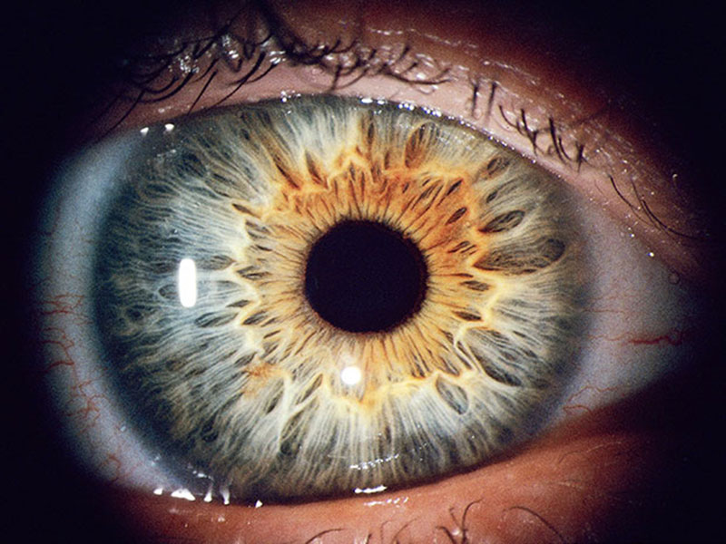 unique pattern formed by iris muscles