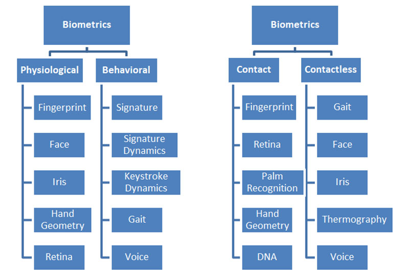biometrics categorized based on different factors