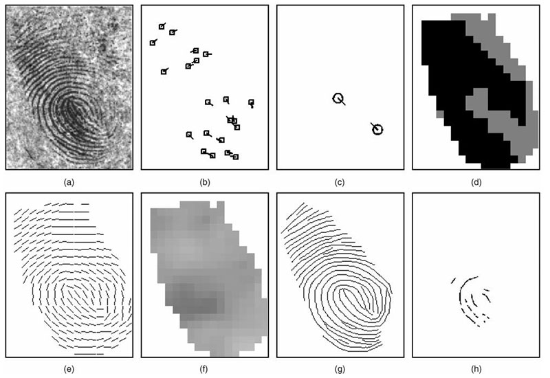 features in a latent fingerprint