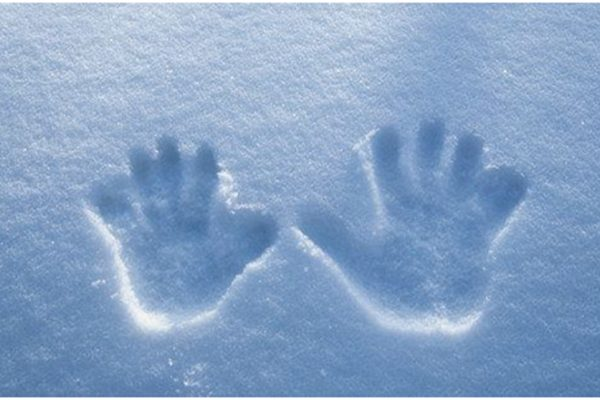 fingerprint scanners fail in cold weather
