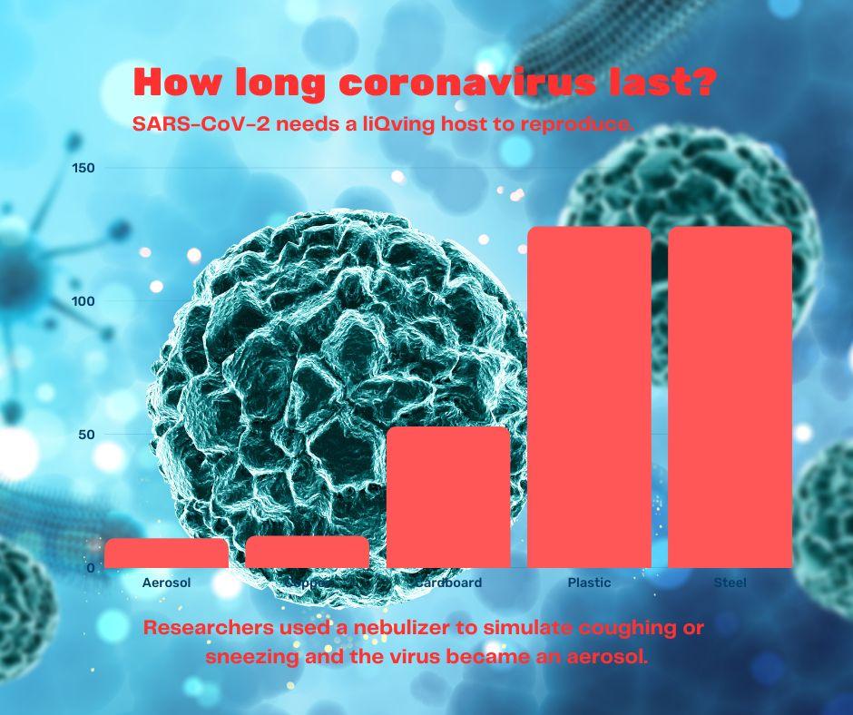 survival of coronavirus outside host