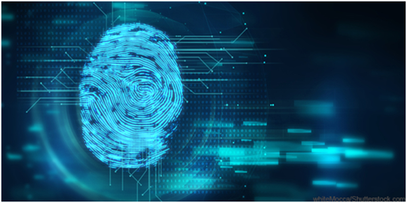 how accurate fingerprint scanners are